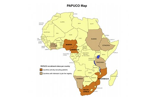 Pan African Pulmonary Hypertension Cohort Study